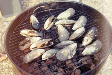 Taste of Summer: Grilled Mussels & Clams With Garlic Butter